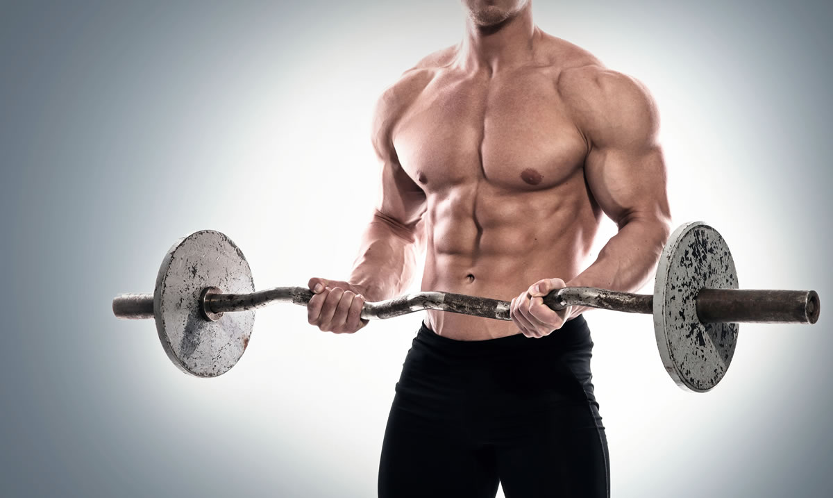 creatine muscle mass