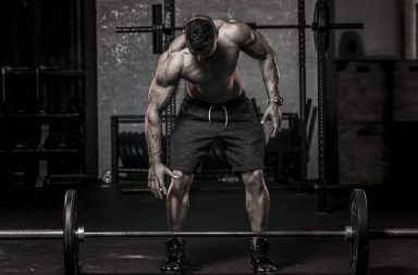 creatine and body fat
